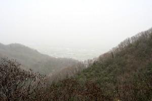 大山桜からの景色