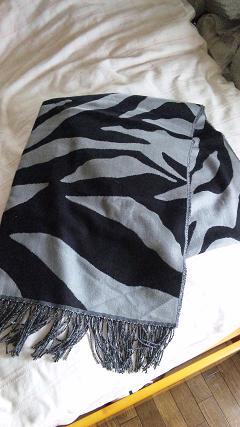 zebra ストーーーーる