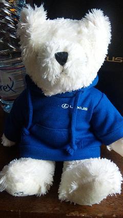 Lexus Bear