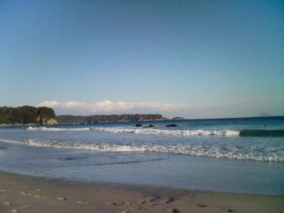 海1.24。2008
