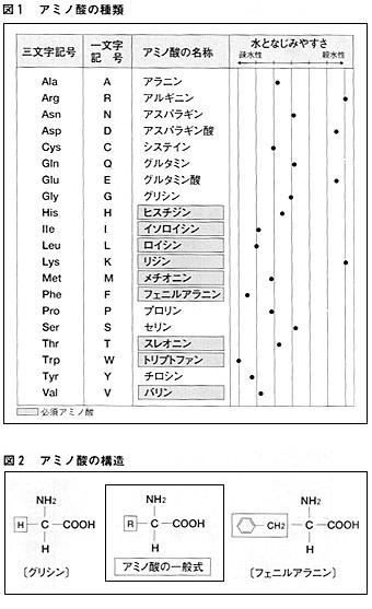 p153_z1_2.jpg