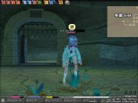 mabinogi_2008_08_28_020.jpg