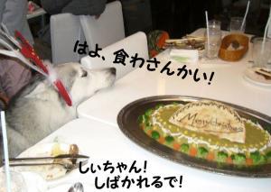 2007 12月お誕生会とクリスマス 019