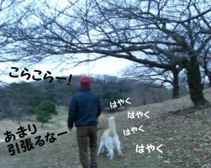 2008 闘病記 050