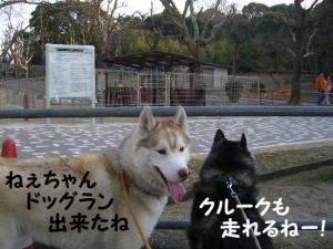 2008 3月瑠璃ちゃんとカフェ 003