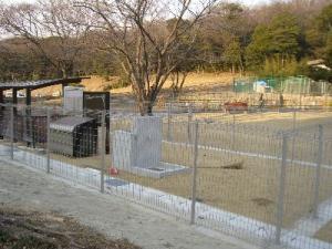 2008 3月瑠璃ちゃんとカフェ 004