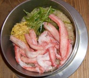 2008 湯沢犬ぞり 106