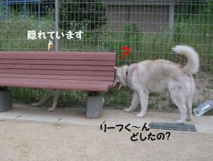 200806 ブログ用 045
