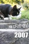 20061231234644.jpg