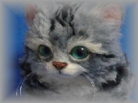 アメショー子猫