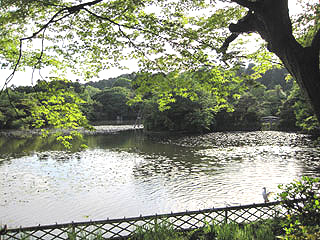 ryouanji_05.jpg
