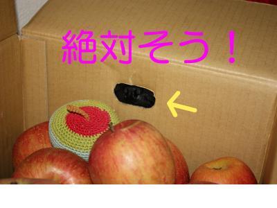 snap_ichigo1smile_200912419348.jpg