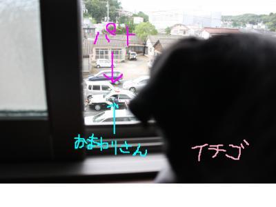 snap_ichigo1smile_200971163048.jpg