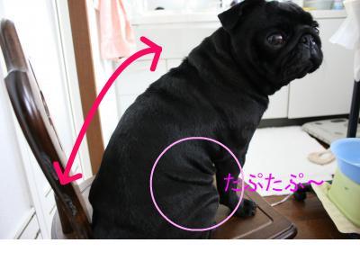 snap_ichigo1smile_200980184741.jpg