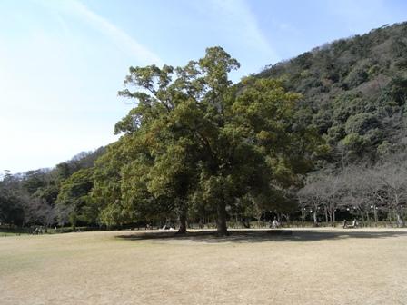 Ritsu6.jpg