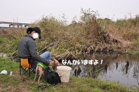釣りとラン3
