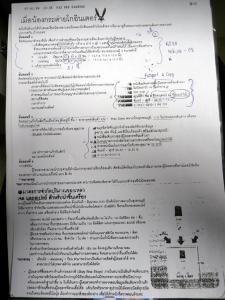 タイ語の書類