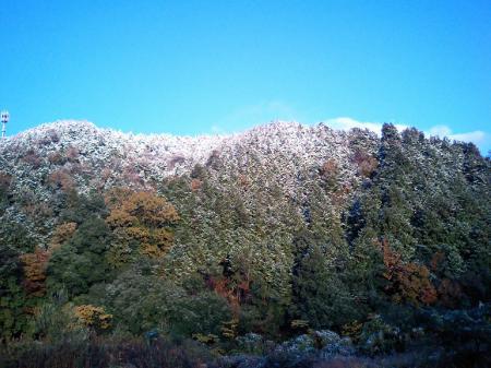 雪と朝日と紅葉と