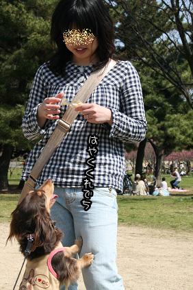 2009 03 21 久宝寺緑地3 blog04のコピー