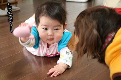 2009 03 23 ベビードール blog01のコピー
