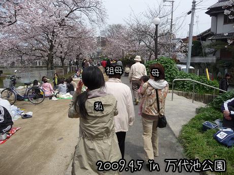 2009 04 05 2009お花見2 blog03のコピー