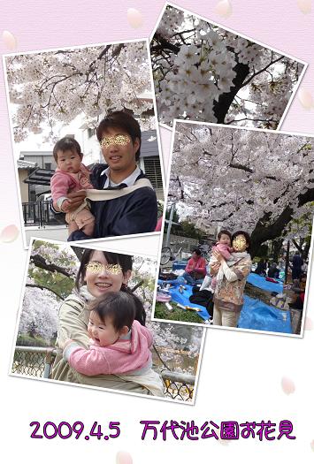 2009お花見 blog01