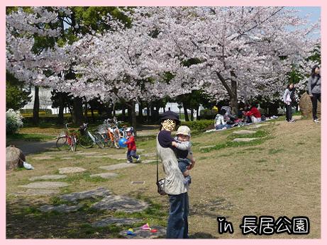 2009 04 06 2009お花見2 blog01のコピー