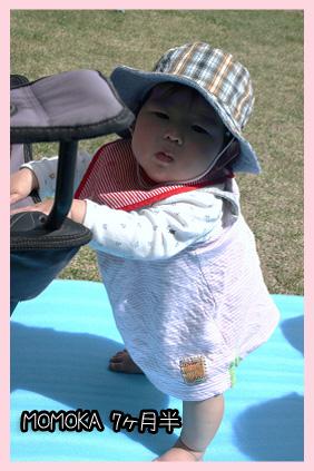 2009 04 18 ひなたぼっこ blog01のコピー