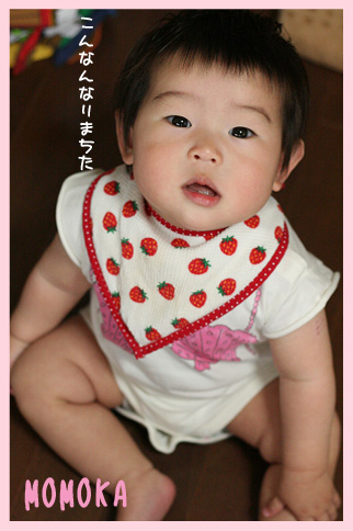 2009 05 31 百香9か月 blog01のコピー