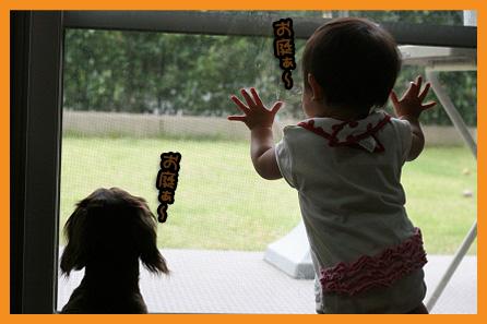 2009 05 31 百香9か月 blog08のコピー