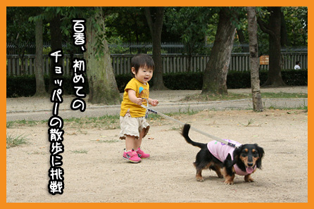 2009 08 31 モモカ誕生日 blog02のコピー