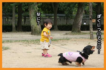 2009 08 31 モモカ誕生日 blog03のコピー