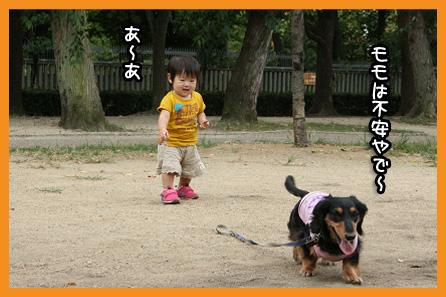 2009 08 31 モモカ誕生日 blog05のコピー