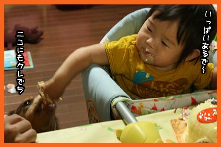 2009 09 06 20090919百香1歳誕生日2 blog04のコピー