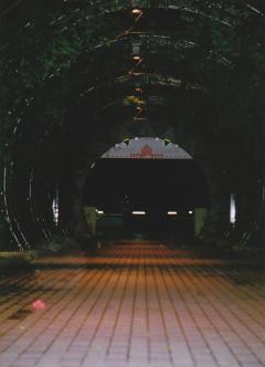 20090624 (3)