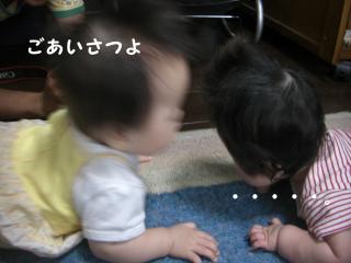 大坂ベビー3
