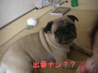 大坂ベビー9