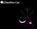 チェシャ猫 (不思議の国のアリス)