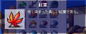 ETC・紅葉