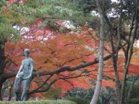 神宮徴古館の自然3