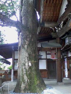 冨士山稲荷神社2