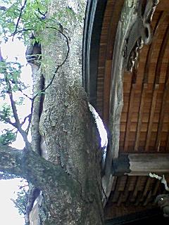 冨士山稲荷神社3