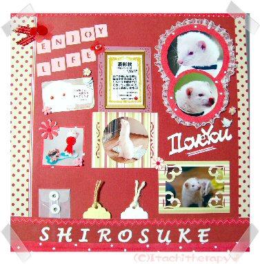 060816shirosuke.jpg