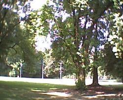 20041123081636s.jpg