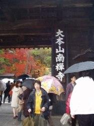 京都紅葉散策