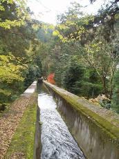 京都紅葉散策南禅寺水路