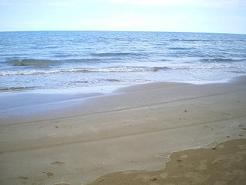 この砂浜は「道路」です。