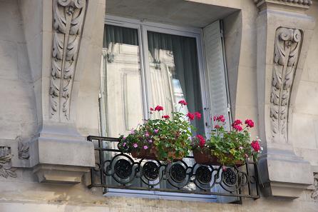 パリの窓辺の花1