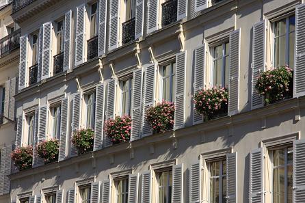 パリの窓辺の花2