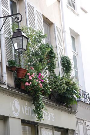 パリの窓辺の花4